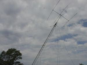 DSC01464